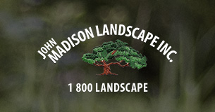 John Madison Landscape